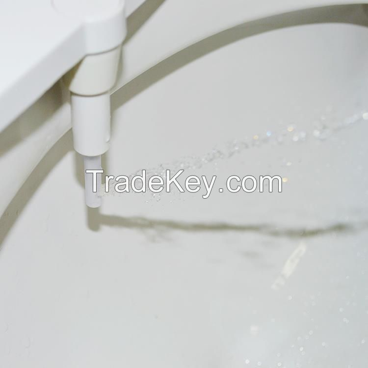 Hygienic toilet bidet sprayer self cleaning nozzle