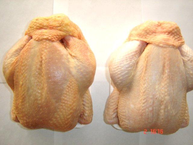 Chicken Grillers and Chicken Parts