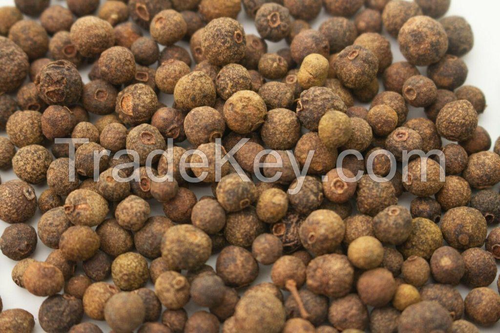 Premium Quality Allspice Berries Whole Pimento dioica Dried