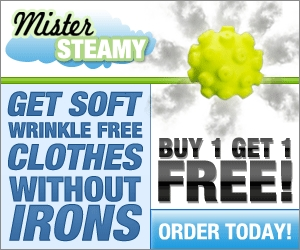 mister steamy dryer ball