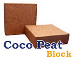 Coconut, Coconut husk chips, Coco peat, Desiccated coconut