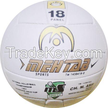 Volley Ball Champion