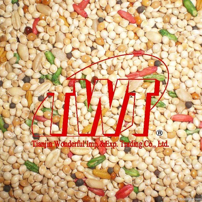 TWT Bird Food / Parrot Food / Finch Food