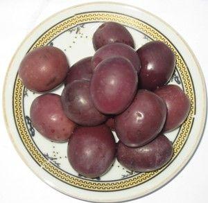 manzanilo black  olives