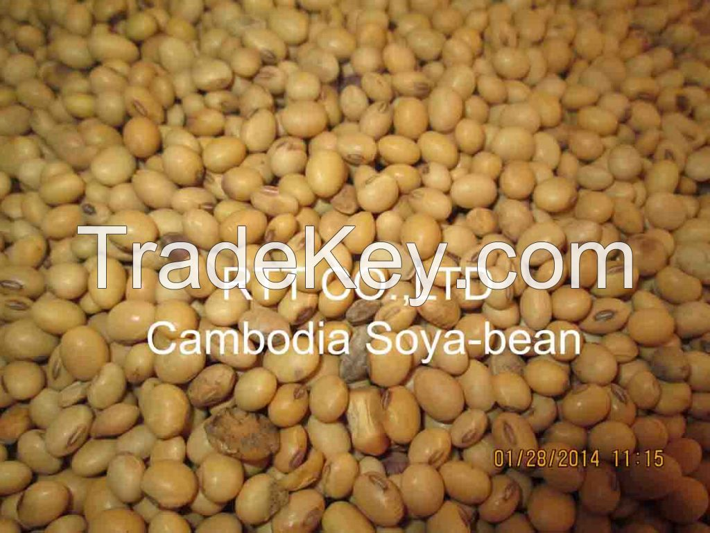 Dried cassava chips, Cassava starch, Yellow corn, Soyabean, Long grain white rice, Cashew nut without shell from Cambodia