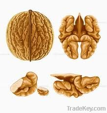 Walnut Buyers | Walnut Importer | Buy Walnut | Walnut Buyer | Low Price Walnut | Cashewnut Suppliers | Cheap Walnut | Wholesale Walnut | Discounted Walnut