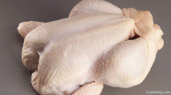 Export Chicken Meat | Chicken Meat Suppliers | Poultry Meat Exporters | Chicken Pieces Traders | Processed Chicken Meat Buyers | Frozen Poultry Meat Wholesalers | Halal Chicken | Low Price Freeze Chicken Wings | Best Buy Chicken Parts | Buy Chicken Meat |