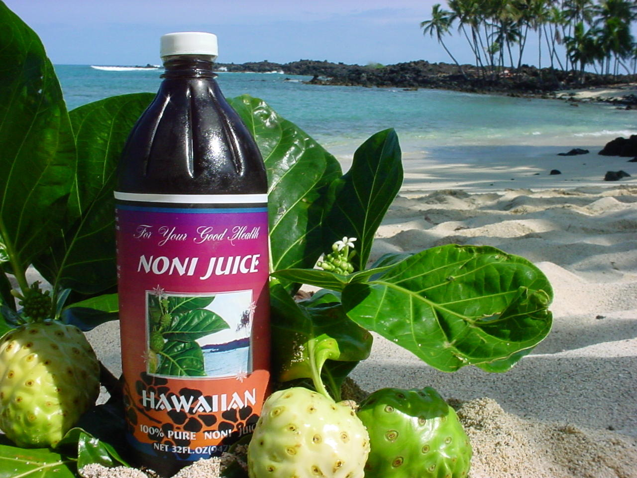 100% Pure Noni Juice Hawaiian at Wholesale Price!