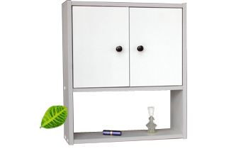 WALL SHELF WITH DOOR