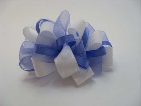beautiful ribbon bow