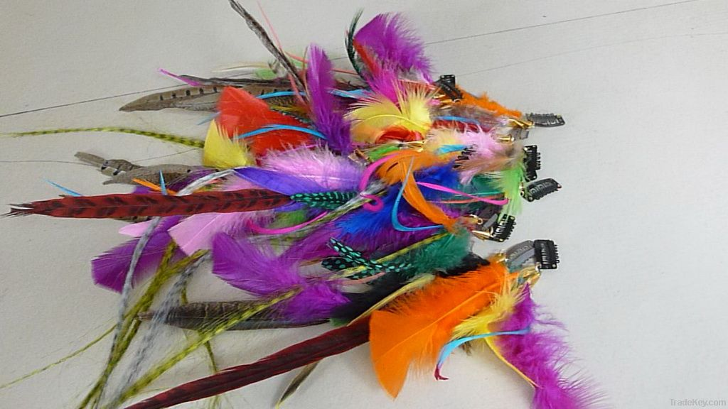 Feather Hair Extension (Clips In)