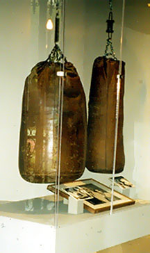 Rocky Marcianos' Personal Punching Bags