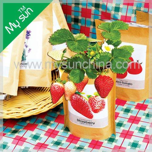 kraft paper bag planting