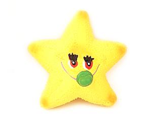 the latex dog toys-starfish