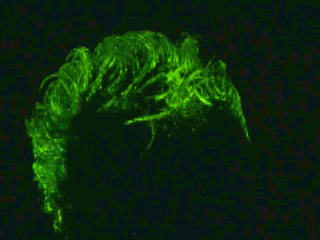 iGlow New Glow in the Dark Party Hairgel . Distributors req for 2011