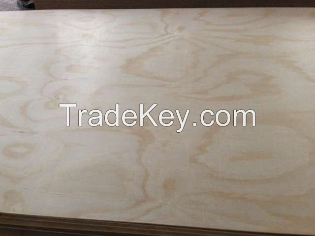 E0 Glue CARB P2 Pine Plywood