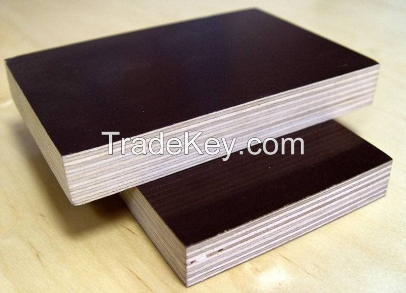 Black Film Face Plywood/Brown Film Face Plywood