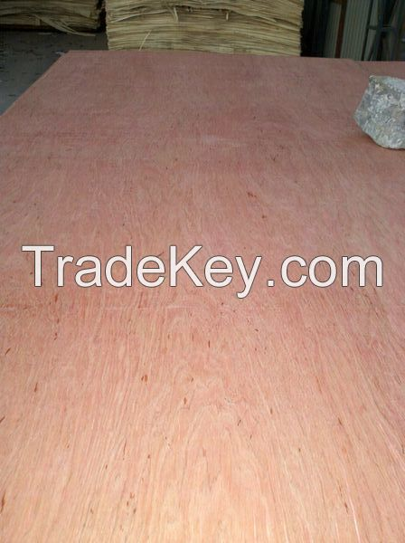 15mm Bintangor Faced Poplar Core Plywood for Commercial Usage