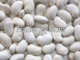 Fresh and dried kidney beans