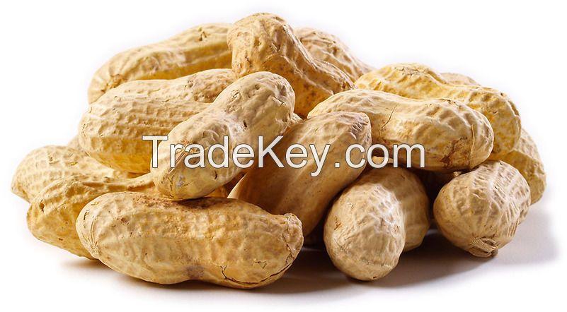 Jumbo Raw Peanuts / Jumbo Roasted Peanuts / Roasted Virginia Peanuts / Cajun Roasted Peanuts / Raw Spanish Peanuts / Organic Raw Peanuts / Blanched Peanuts / Organic Peanut Butter Stock