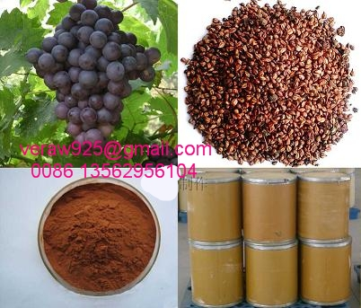 Grape Seed Extracts, Proanthocyanidin95