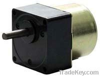 Synchronous Magnet AC Geared Motor