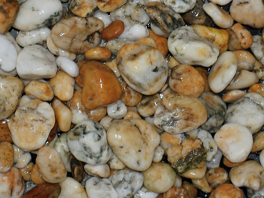Pacific Northwest Beach Agates