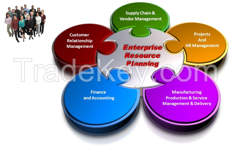 ERP Solutions (Standard Solutions)