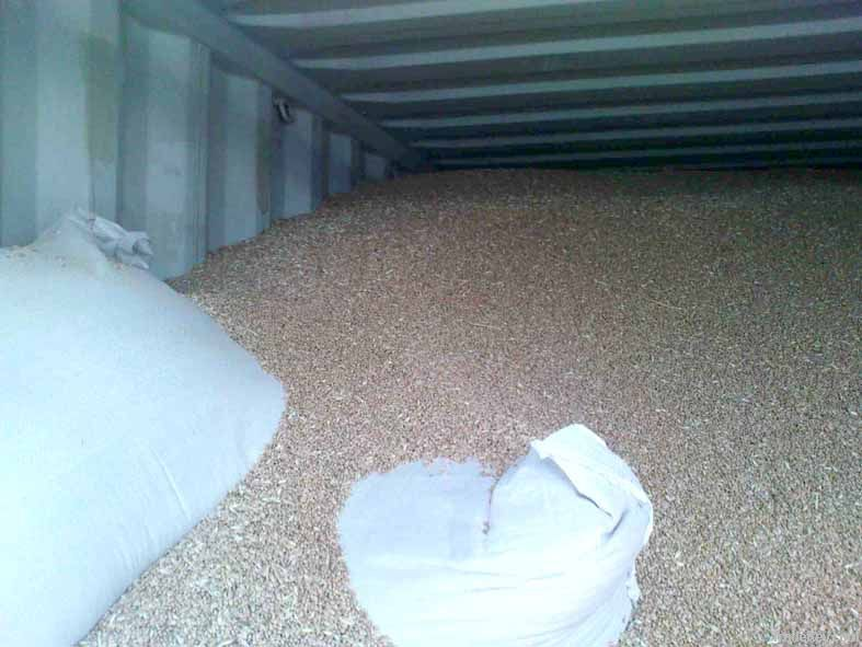Wheat / cereal / olive grains (for export from Ukraine)