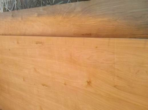 Birch Plywood best quality by prime fortune Plywood