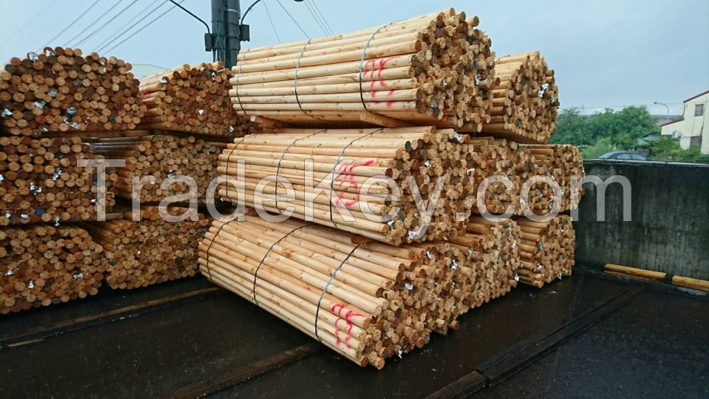 Radiata Pine Core logs available- pine logs of plywood