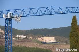 Topless tower crane TCT5013 (8t)