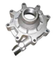 Stainless Steel Casting Pump