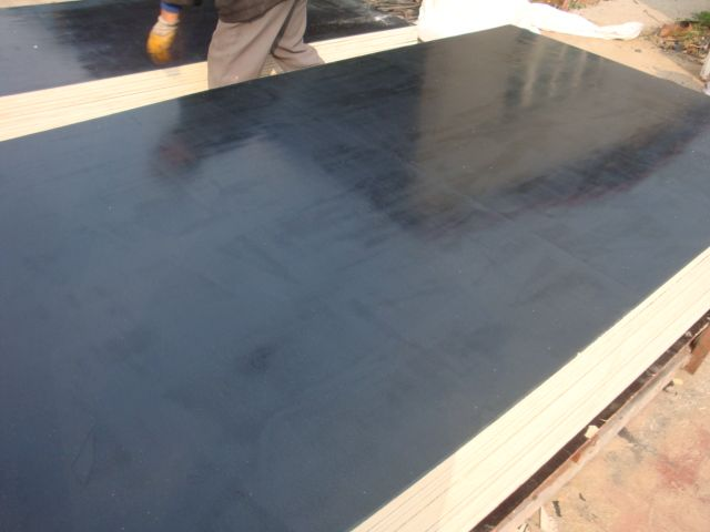Film Faced Black Plywood with coating