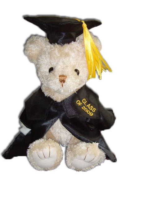 graduation teddy bear plush toy