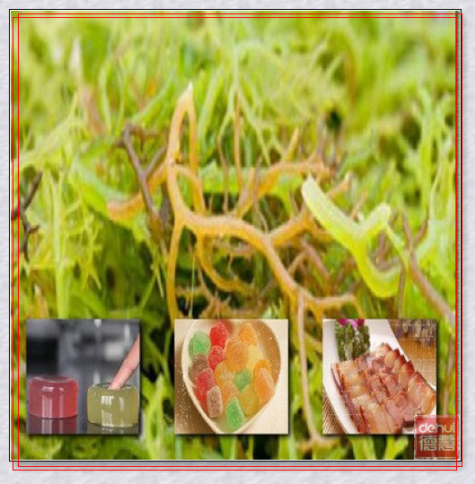 Carrageenan for meat products