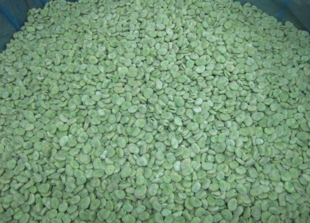 IQF Broad Beans