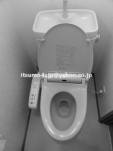Digital washlet