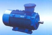 YB2 Flame Proof Motor