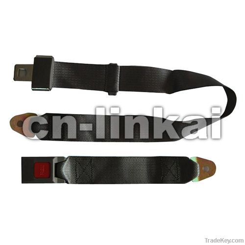 2-point autocar safety harness
