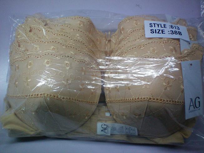 Ladies embroidery hot bra