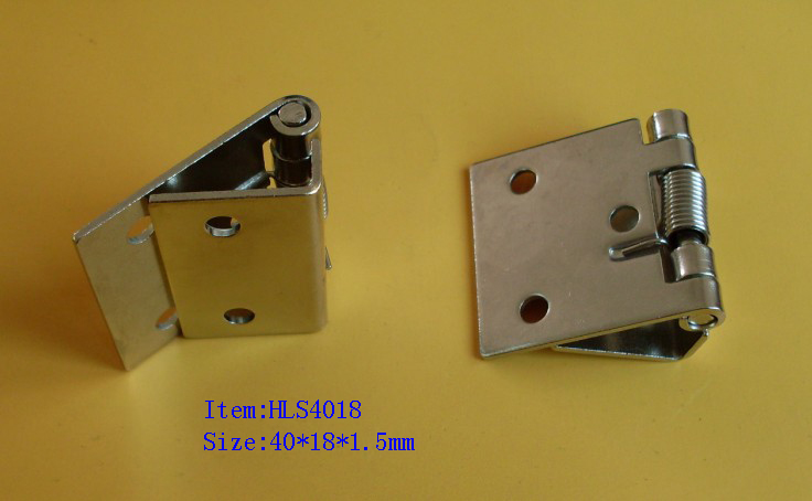spring small hinge