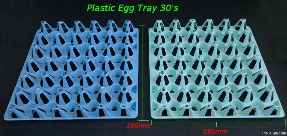 Plastic Egg Tray 30's