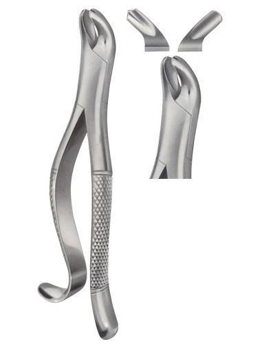 Dental Extracting Forceps American Pattern Dental Instruments