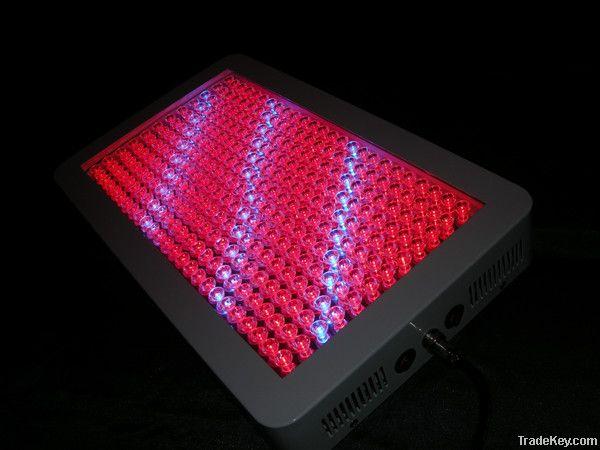 300w LED Grow Light with 300pcs 1w LEDs