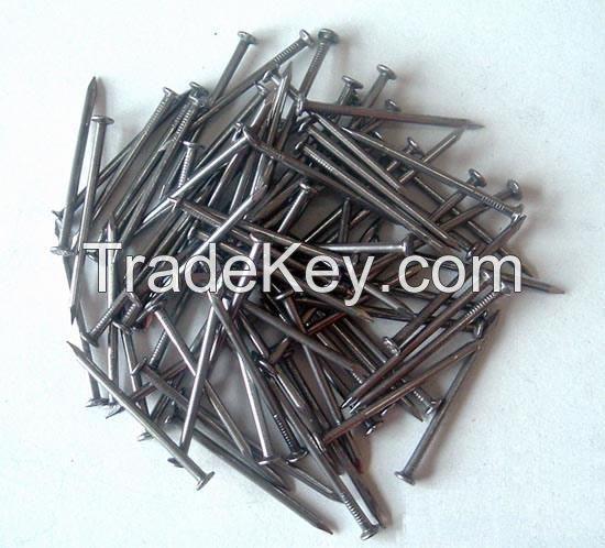 wood iron nails/concrete common nails/cement nails