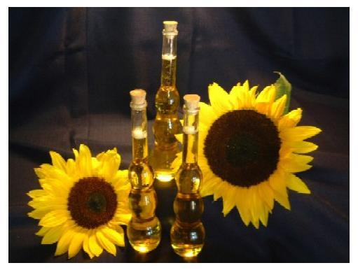 SUNFLOWER OIL,edible oil,refined cooking oil importers,pure cooking oil buyers,refined cooking oil importer,buy cooking oil,cooking oil buyer