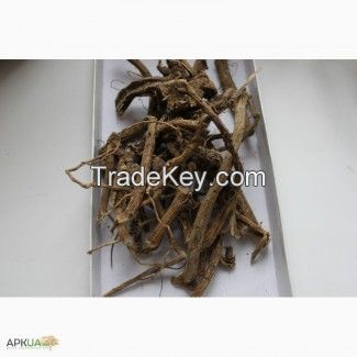 root of althaea