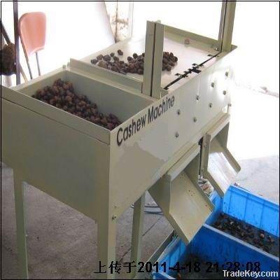 semi-automatic cashew shelling machine