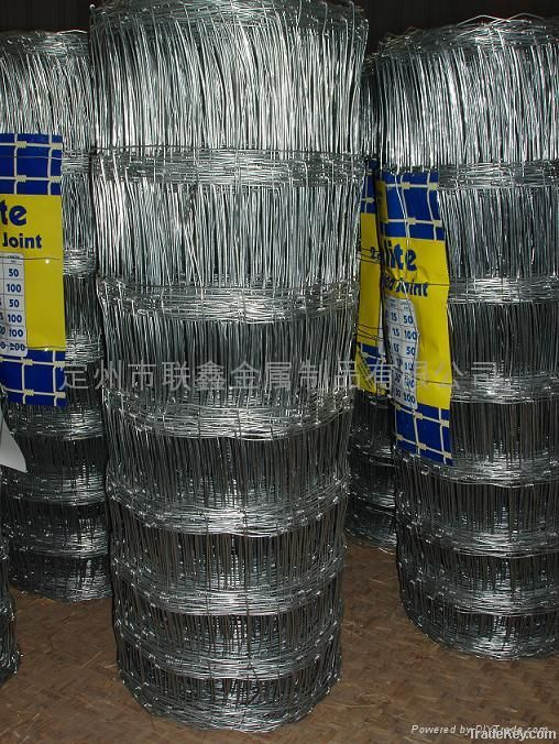 Metal wire-netting